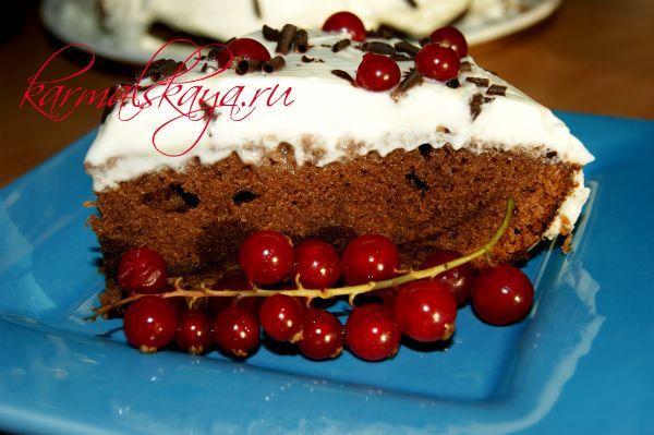 shokoladny-j-tort-brayni-10