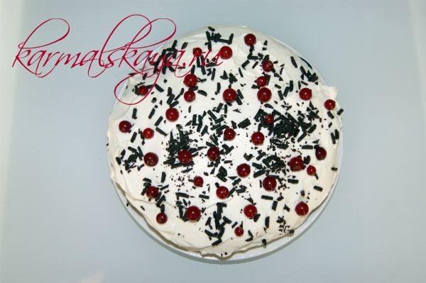 shokoladny-j-tort-brayni-8